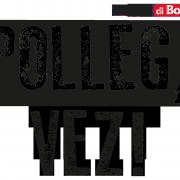 POLLEG_CLASSIC_NEW